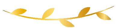 GOLD ITEM-01